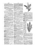 Página 2486